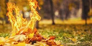 харьков штраф сжигание листьев